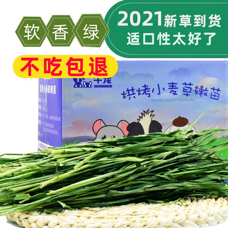 2021 Выбор высококачественной пшеничной травы сено 500g пшеницы нежный саженец без шипов кролика голландский свиной свиной свинки дракона кошки сено