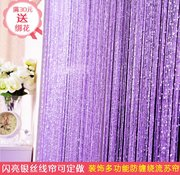 Mosquito curtain curtain line encryption silver Xia Feng Shui bedroom curtains wedding decoration curtain tassel custom partition