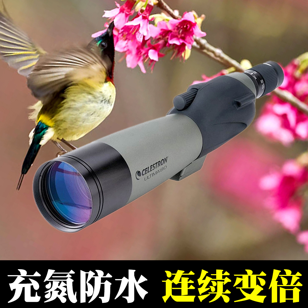 American StarTrend Telescope C20-60X80B Bird Mirror Can Connect to Camera