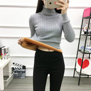 Autumn and winter with cashmere sweater female short sleeve head long sleeved size slim warm turtleneck sweater shirt thickening