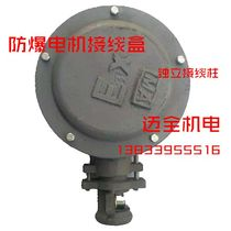 YB2 explosion-proof motor cast iron terminal box independent terminal 70 90 100 120 150 200 in hot sale