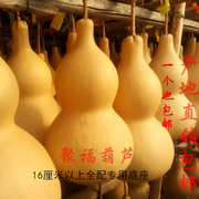 The natural calabash gourd calabash gourd gourd WenWan feng shui ornaments pendant 20-85 cm shipping