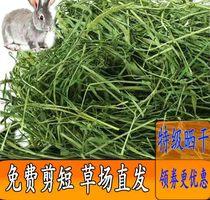 Премиум Тимоти трава секция сена Бейти Шиншилла морская свинка корм для кроликов Голландский корм для свиней свежий корм 500 г