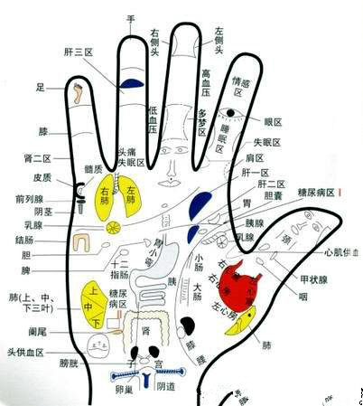 Looking at palmistry Online