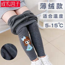 Girls leggings plus cashmere velvet spring and autumn 2019 winter one cashmere outer wear baby pants childrens pants