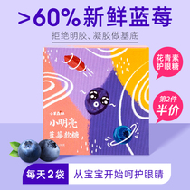 Lamb forest Blueberry Fudge Baby snack additive-free childrens myopia anthocyanin eye candy 3 two 2 years old