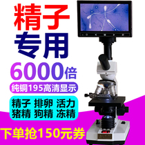 (Price protection 2 years) artificial insemination temperature heating optical microscope professional look at sperm semen pig semen frozen sperm dog fine ovulation algal fish disease biological aquaculture special display