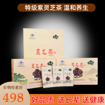 Jiayuan brand Lingzhi tea health care tea conditioning bag 2.5g x 20 pack x 2 boxes a total of 100g boxed purple Lingzhi