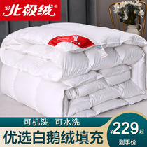 Duvet five-star hotel white goose down goose feather winter is thickened warm quilt quilt double spring and autumn