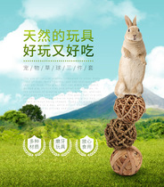 CARNO Kano rabbit grass ball grinding guinea pig dragon cat Dutch pig grass grinding tooth snack hay dough three outfits