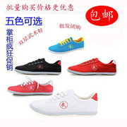 Double star shoes shoes male martial arts Taiji Kungfu shoes children Wushu shoes spring training shoes Dichotomanthes bottom shoes canvas
