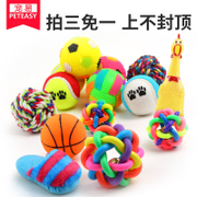 Pet dog toy ball sound bite training Tactic molar Bichon puppy dog and cat pet toys