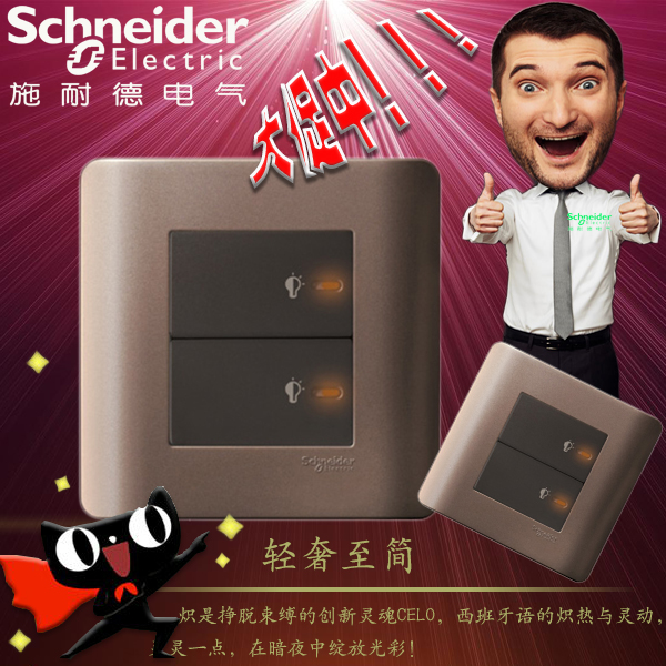Schneider Switch Socket Tap Series Double Press Type Dimmer Switch Type 86 Wall Panel Style Brown