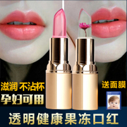Jelly moisturizing lipstick with cup of bean pumpkin grapefruit crystal clear color lipstick lip biting replenishment