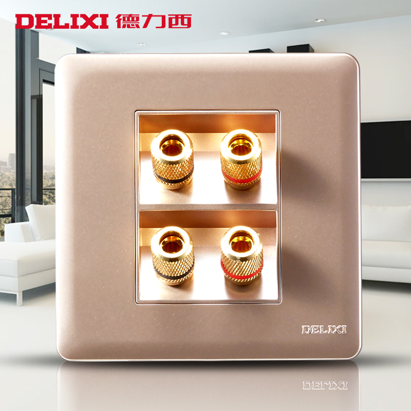 Delixi Ziying Zijin Large Panel Without Border Switch Power Supply Wall Socket Four Audio Switch Socket