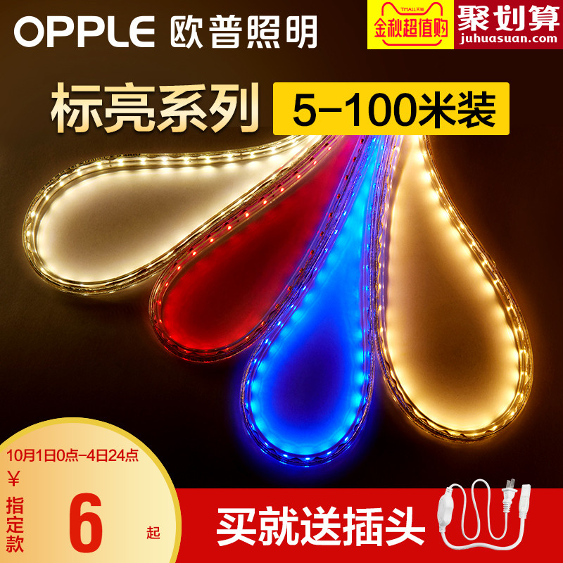 Lantern with LED neon lights color line lights, living room ceiling decoration patches, ultra bright light with more than a meter.