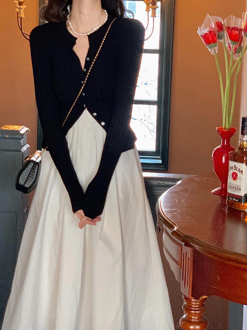 Wine lunch French retro 2021 spring new Hepburn umbrella skirt female high waist thin A-word medium long skirt