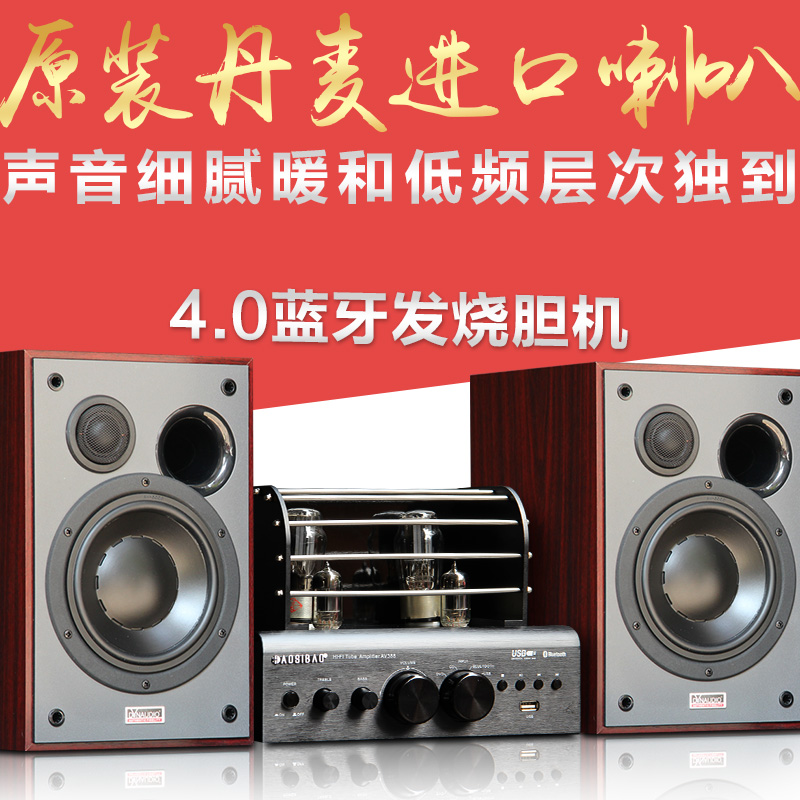 Audience 5th Denmark imported hifi fever bookshelf speaker 6 inch suit combination monitor sound wooden