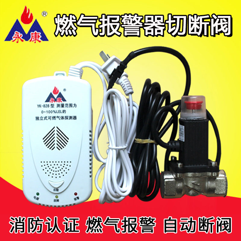 Yongkang Household Gas Alarm Automatic Cut-off Valve Gas Leakage Detection of Liquefied Natural Gas and Combustible Gas