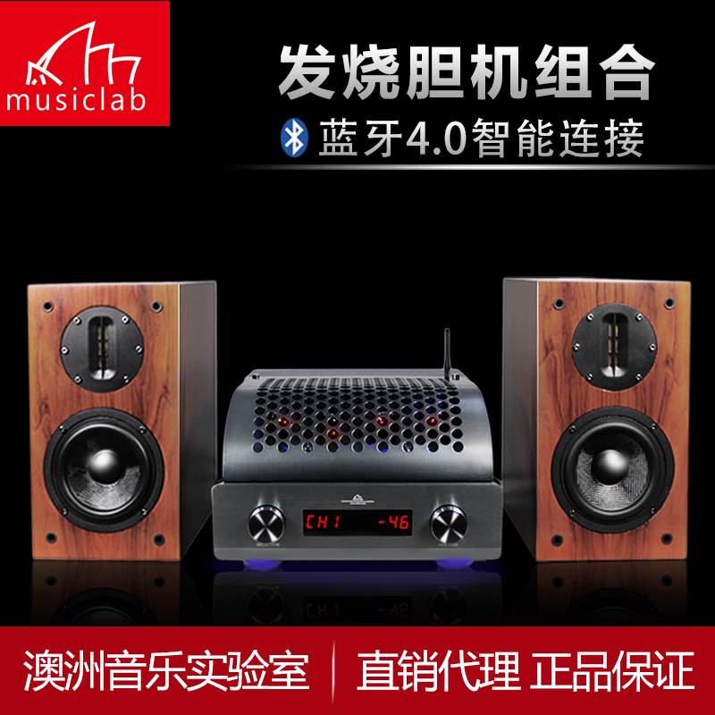 Musiclab-ds v8 tube amplifier amp fever HiFi wireless Bluetooth amplifier speaker combination