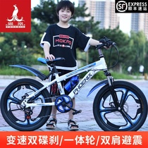 Phoenix childrens bicycle 8-10-12 years old childrens bicycle Student bike Mountain bike Disc brake variable speed single speed