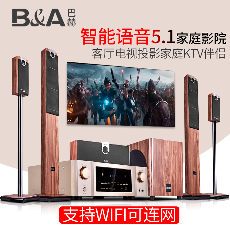 B & A / Bach C5 wireless home theater 5.1 audio suite living room TV wall mount floor speaker home