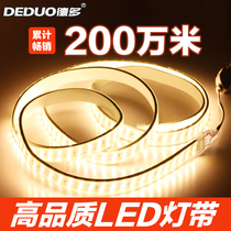 DEDOLED LIGHT WITH TRI-COLOR DIFFERENTIAL LIGHT SUPER-LIGHT STRIP DOUBLE-LAYER LIGHT LIGHT LIGHT LIGHT HANGING ROOF WATER-PROOF LIGHT BELT 220V