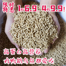 Chicken Granule Open Feed Bulk Chicken Feed Local Chicken Eight Brothers Quail Corn Granules Broken Fishing, Hitching and Posting