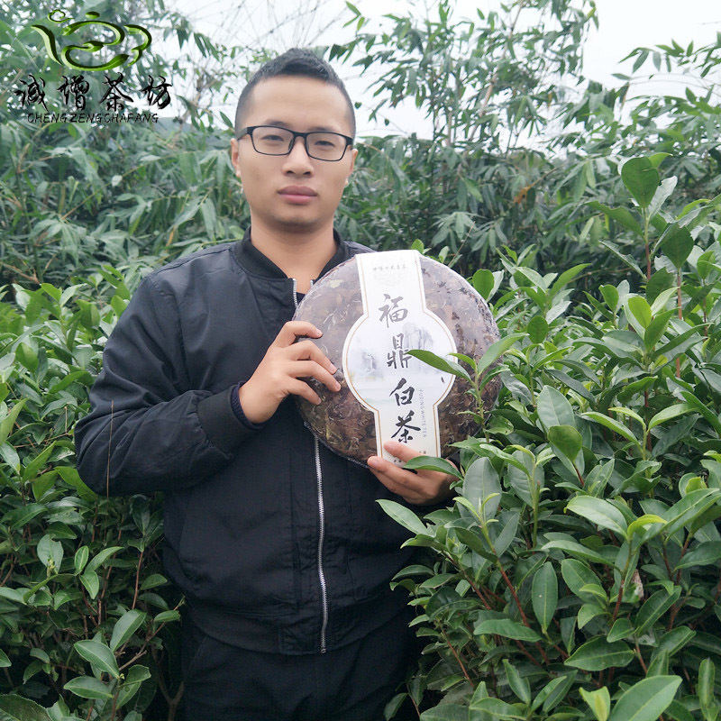 [The goods stop production and no stock]2015 Spring Tea Year Fuding White Tea 3kg Pack Wilderness Mountain Tea Chennian Shoumei Tea Cake
