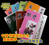 9DVD disc DVD teaching Chinese calligraphy and painting technique lecture teaching Chinese painting Landscape peony Vine plum orchid bamboo Chrysanthemum