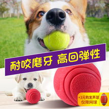 Dog Toy Ball Bite Resistant Golden Hair Teddy Molar Tennis Pet Puppy Small Dog Toy Goods Leak Ball