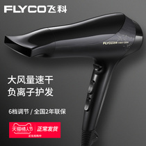 Feike hair dryer home stylist dedicated high-power negative ion hair care dormitory students mute hair dryer