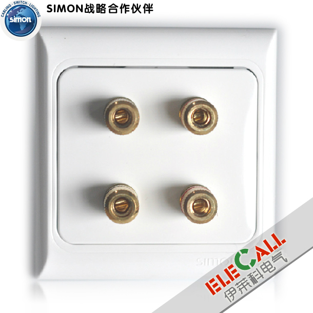 Simon Switch European Code 61 Series Two Speaker Outlets J60800Y2