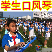 32 keys, 37 keys, children, students, classroom teaching, tape blowing, professional performance instruments, Chi Mei quality