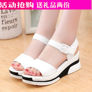 2017 new female summer sandals slope with thick soles muffin bottom soft bottom waterproof products with Velcro shoes
