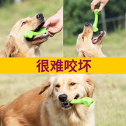 Dog bite dog teeth teething toy puppy Tactic golden large dog bone pet Bichon