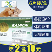 The dog dog dog in vivo anthelmintic activities vermicide pet cat Teddy golden retriever puppies piece insect drug