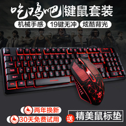 City Fangyuan Wrangler wired keyboard and mouse computer mouse game machine handle light desktop