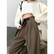 Grey Brown wide leg pants women Spring and Autumn high waist straight straight pants small man loose casual mop suit pants winter