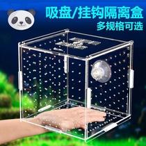 Small farmed fish tank isolation plate separator crystal shrimp production box isolation net fish pond small fish fry spawner