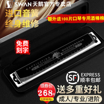 German imported reed 24-hole complex C tuning harmonica advanced adult professional playing level beginner introductory instrument