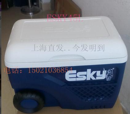 Esky incubator 45L65L large refrigerated portable fresh fishing box takeaway car refrigerator sea fishing road
