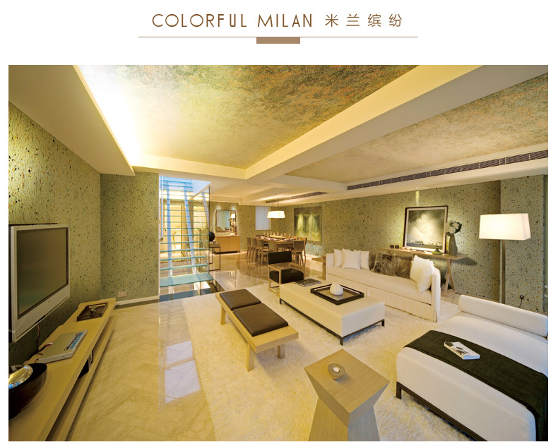 Fema Fima Germany high-end original imported art paint Milan colorful series