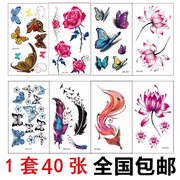 Tattoo waterproof female lasting simulation Butterfly Tattoo totem Harajuku lotus fox small fresh package