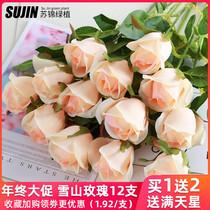 Имитация розы гостиная украшения Валентина букет обеденный стол один поддельный цветок сухой цветок украшения пластиковые цветочные композиции украшения