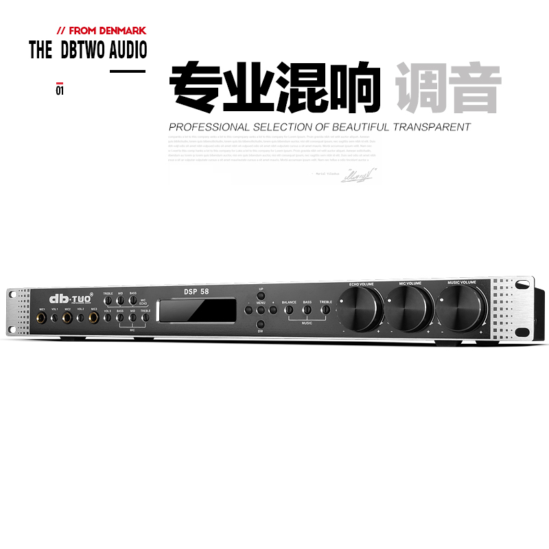 Db-two DSP-58 KTV preamp effect feedback suppression anti-howling digital audio processing reverb